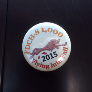 Stormy's button.   A special touch done by the hosts for the dogs achieving new titles